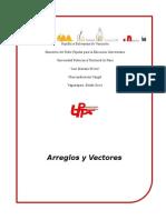 Arreglos y vectores - trabajo final.docx