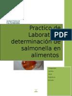 Determinacion de Salmonella en Alimentos