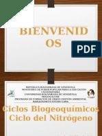 Presentacion Ciclo Del Nitrogeno.