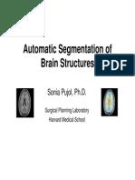 AutomaticSegmentation_SoniaPujol