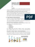 estudiodemercadodelacarnedecuyyacki-111127143253-phpapp02