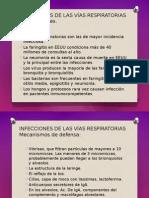 IRAS - ANATOMIA.pptx