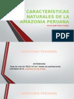 Características Naturales de La Amazonia Peruana