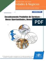 Encadeamento produtivo sebrae nacional serviços.pdf