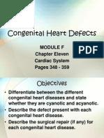 Congenital Heart Defects Presentation