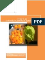 Exportacion de Aguaymanto Organico en Almibar