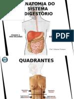 04 Trato Gastro Intestinal - Fígado e Sais Biliares