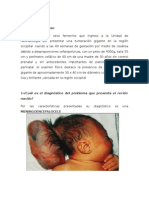 Embriologia Caso Clinico