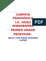 CARPETA PEDAGOGICA -10282