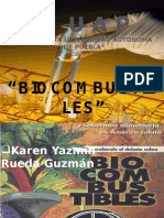 Biocombustiblesfinal 111130154655 Phpapp01 (1)