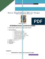 Informe 4 Bioquimica (1)