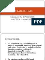 4.1metabolisme Umum (Fileminimizer)