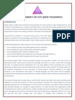 Target Market of Gts Qhse Trainings