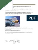 Tratamiento protusion discal