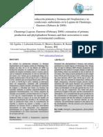 01 PP CHAUTENGO ESPANOL.pdf