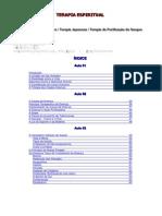 Terapia Espiritual-PC-Elysio.pdf