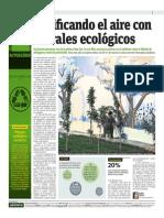 Purificando El Aire Con Murales Ecológicos
