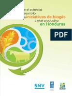 Hn Estudio Potencial de Biogas Version Tecnica