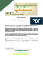 proteccion_de_los_animales.pdf