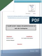 PFE 3 audit social