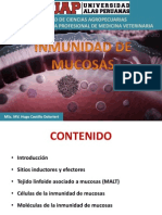 UAP - veterinaria