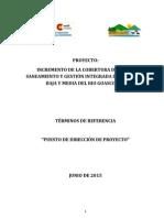 TDR Director-A _proc2de Proyecto HND 015 B 2015 06 22