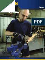 82_Spanish_FLC_eVises_eBook.pdf