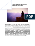Mindfulness 4-PRINCIPIOS FUNDAMENTALES DEL ENTRENAMIENTO MENTAL