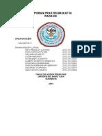 Laporan Praktikum Ikgt III - Radang