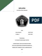 Kaspan_Diplopia