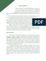 Dolor (Neuropático).pdf