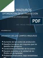 JT2014 Udabol1 -MA Hinojosa - Nuevas Oportunidades en Campos Maduros