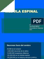 15 - Medula Espinal