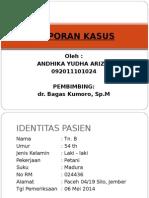 1. Lapsus Ariz