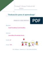 ENSAYO DESCRIPTIVO.pdf
