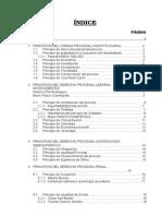 Indice de La Monografia de Los Principios Procesales