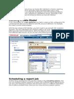 Oracle BI Publisher_Customized