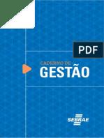Caderno de Gestao SEBRAE