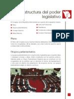 Estructura Del Poder Legislativo