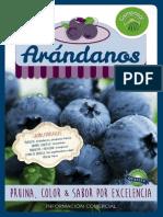 2014-11-camposol-blueberries-trade-mailing-es.pdf
