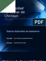 Topicos - Sistema Carlos Briones