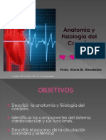 Sistema Cardiovascular Rev.2012 (2)