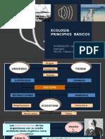 Ecologia Principios basicos