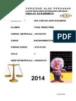 RM - POOL PEREZ PEÑA_MODULO II.docx