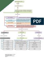 Mapa Conceptual - Actividad 1 Derechos Fundamentales