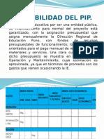 Sostenibilidad Del Pip