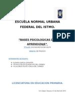 Informe Del Panzazo
