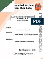 Clasificacion de Los Vegetales de Acuerdo a Su Fotoperiodismo
