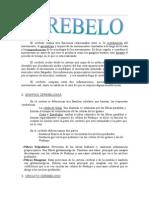 s29-cerebelo (Autosaved).doc