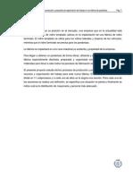 Estudio de Los Procesos de Producción y Propuesta de Organización Del Trabajo en Una Fábrica de Parabrisas